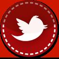 Twitter Bird red stitch icon