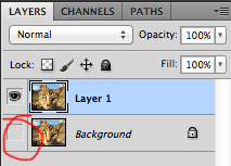 Turn off original layer