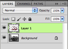 layer-view