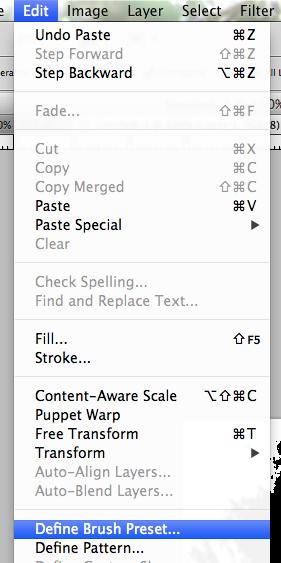 Edit > Define Brush Preset